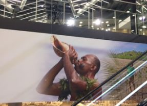 COP 23: A half victory for developing countries