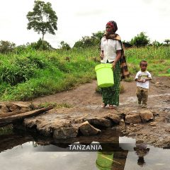 "Tanzania –Natural Resources: "" Communities  must know their rights and obligations""- Report"