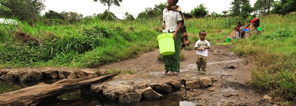 """Tanzania –Natural Resources: """" Communities must know their rights and obligations""""- Report"""