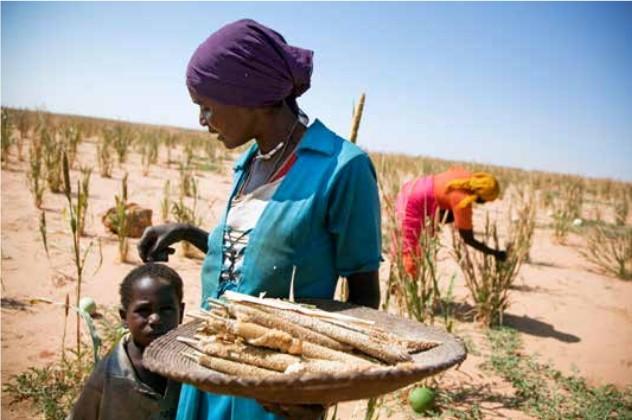 Semaine Africaine à l'Unesco : La femme Africaine face aux défis climatiques