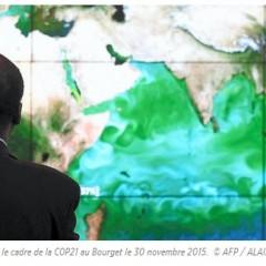 COP21 – Afrique : le chemin est encore long