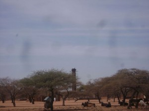 deforestatation in sudan