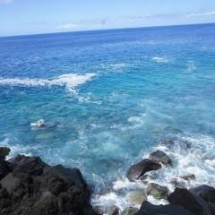 Comores- Développement Economique:Les îles vont intégrer la SADC