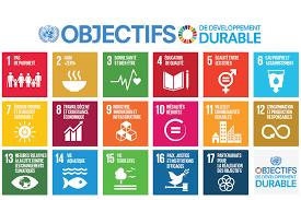 Plus de 100 jours après l'adoption des Objectifs du développement Durable
