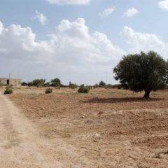Changement climatique : La Tunisie se prépare pour la COP 22