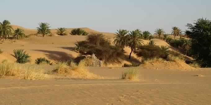 COP 22: Pour un plaidoyer maghrébin  sur la justice sociale et climatique