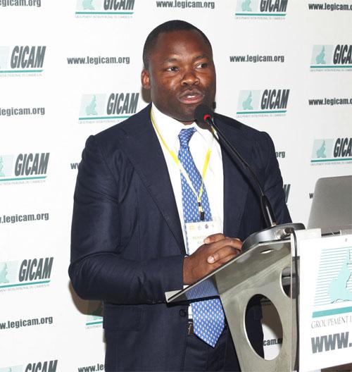Les ONG multinationales, la RSE et le développement économique de l'Afrique
