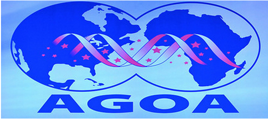 The United States and Togo to co-host AGOA on August