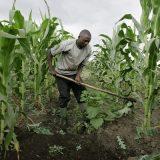 Changements Climatiques: Le Japon et l'Autriche soutiennent  le secteur privé en Afrique
