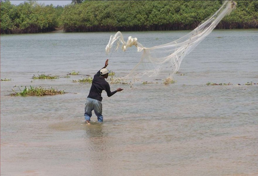 Bénin: les ressources halieutiques en péril