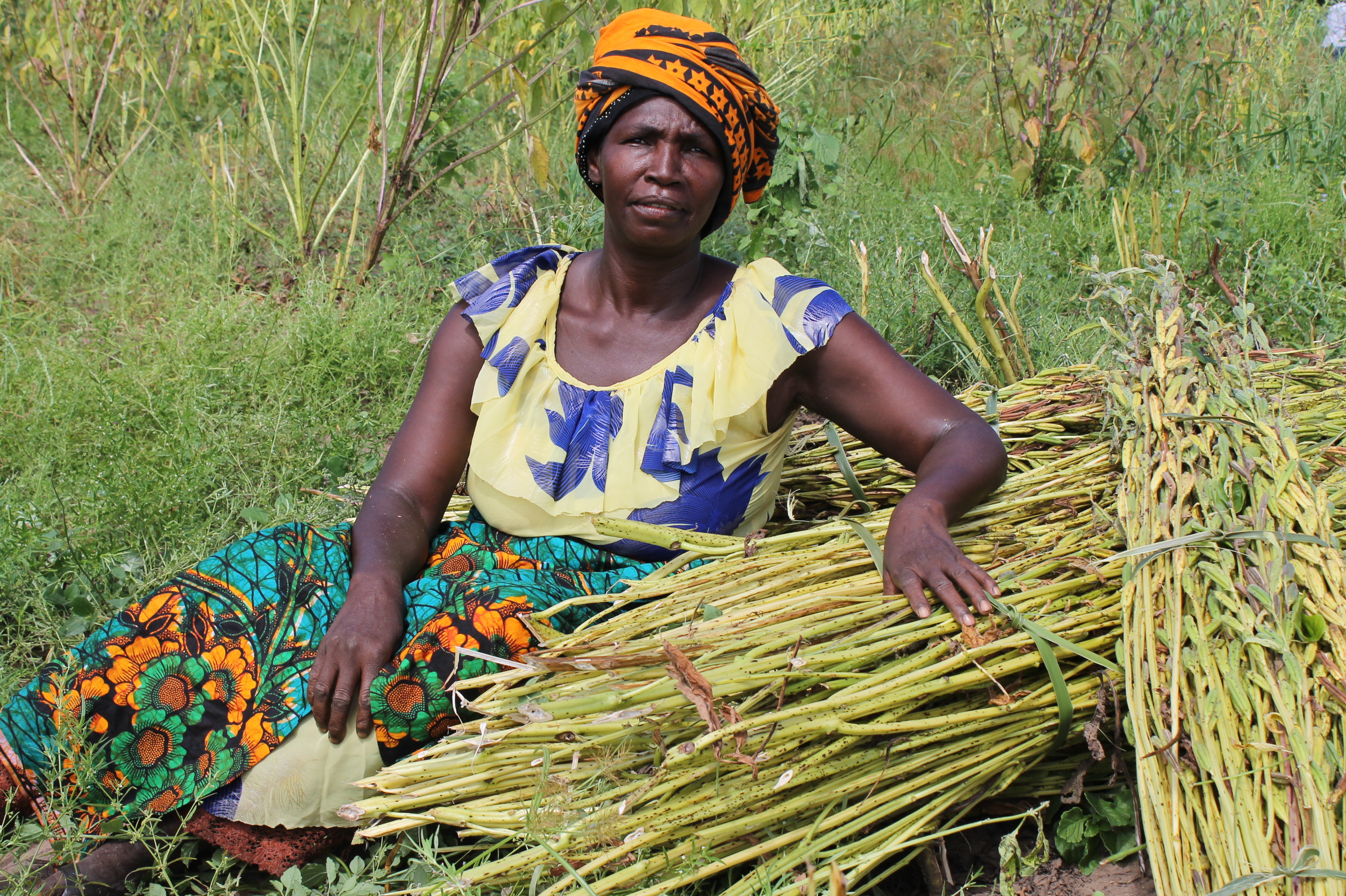 Climate Change in Tanzania: Farmers are Waiting for solutions
