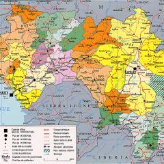 Guinée-France: Mobilisation des ressources à Paris