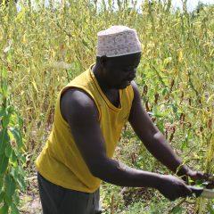 Afrique Climat- GLF Nairobi 2018: les solutions  en Afrique
