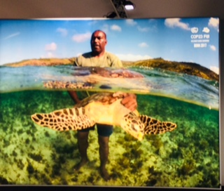 COP 23: Au fond de l'eau