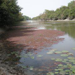 Guiné-Bissau e mudanças climáticas